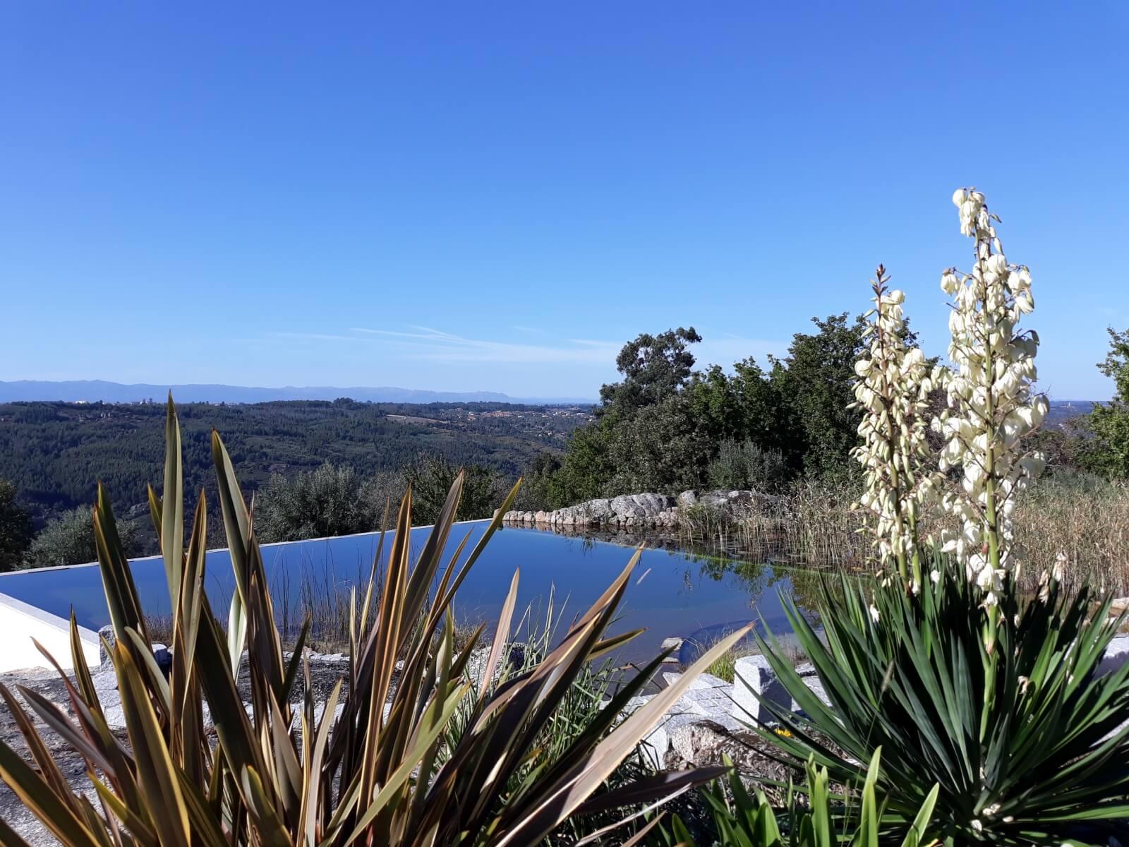 A piscina ecológica com belas vistas