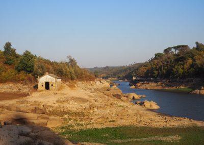 Wandelarrangement: Mondego