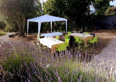 Os grupos podem desfrutar de refeições ao ar livre juntos