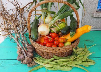 Fresh vegetables at Quinta Vale Porcacho
