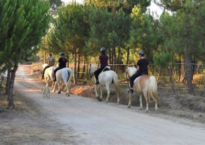 Horseback riding in Portugal