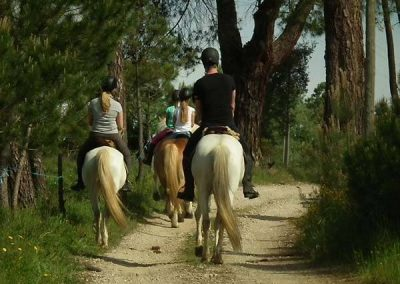 Horseback riding on paths in Portugal
